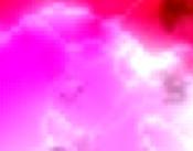 franzoesische weine